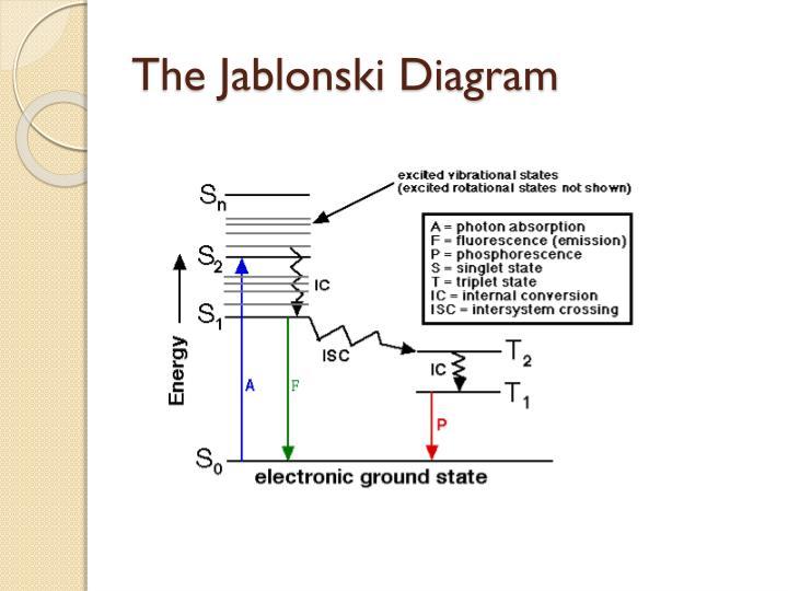 Ppt fluorescence depolarization powerpoint presentation id5847426 the jablonski diagram ccuart Choice Image