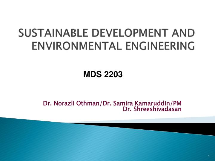 sustainable development and environmental engineering n.