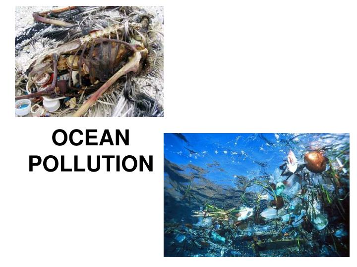 theory of marine pollution