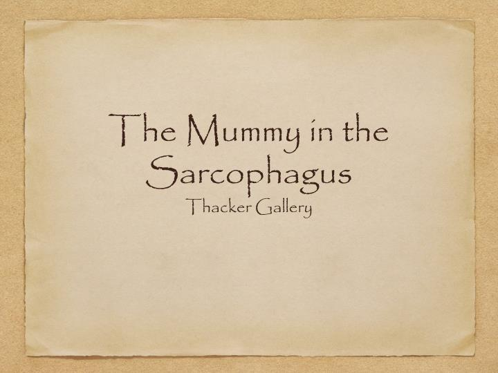 the mummy in the sarcophagus n.