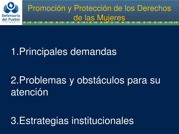 Promoci n y protecci n de los derechos de las mujeres