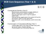 bcb core sequence year 1 2