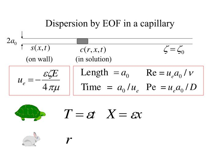 Dispersion by EOF in a capillary