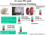 in vivo pd and transcriptional profiling