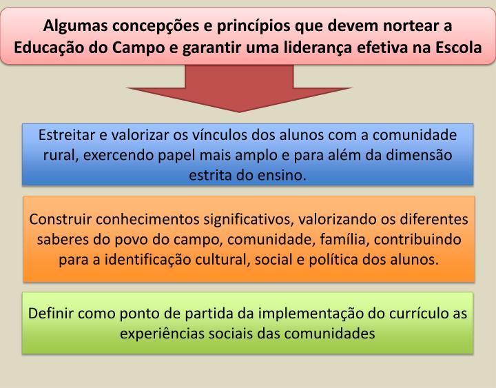 Algumas concepções e princípios que devem nortear a