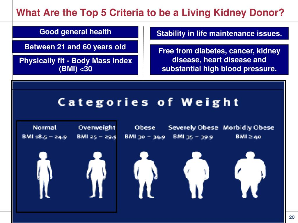 PPT - Living Donor Kidney Transplant PowerPoint Presentation - ID