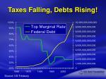 taxes falling debts rising