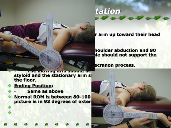 Lateral (External) Rotation