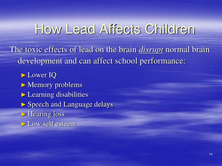 The toxic effects of lead on the brain