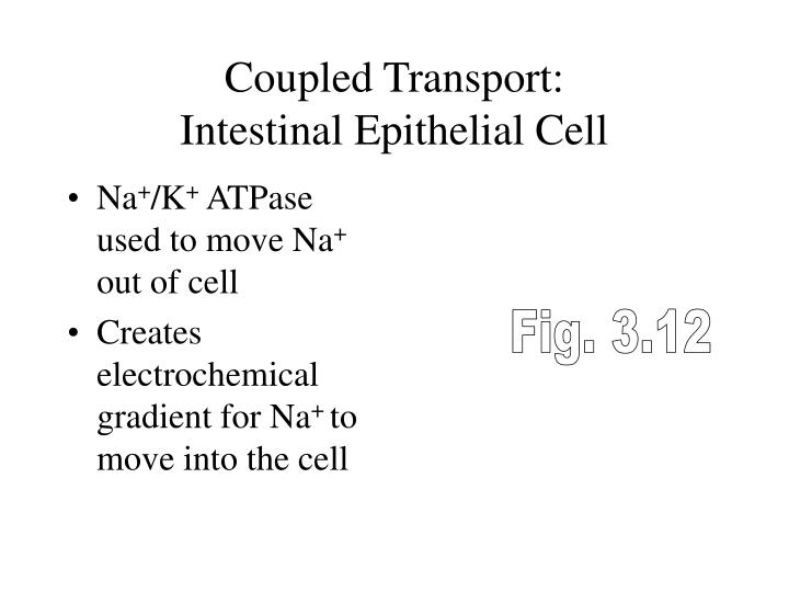 Coupled Transport: