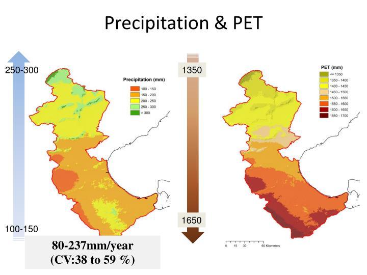 Precipitation & PET