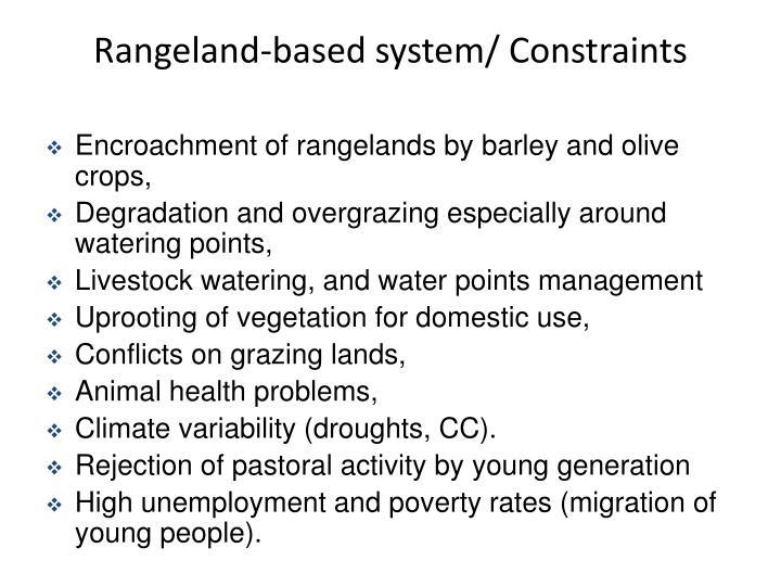 Rangeland-based system/ Constraints