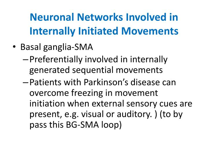 Neuronal Networks Involved in Internally Initiated Movements