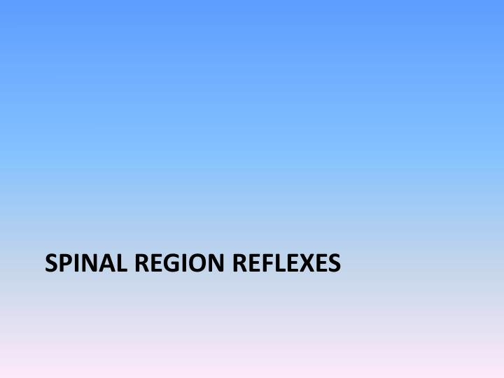 Spinal region reflexes
