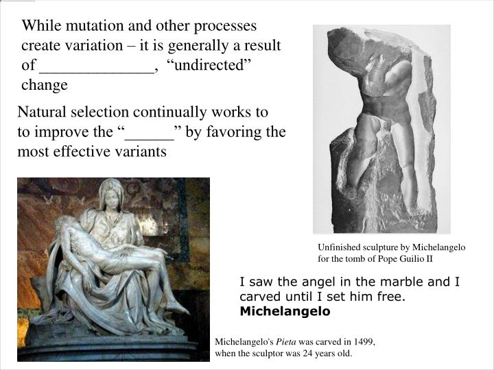 "While mutation and other processes create variation – it is generally a result of ______________,  ""undirected"" change"