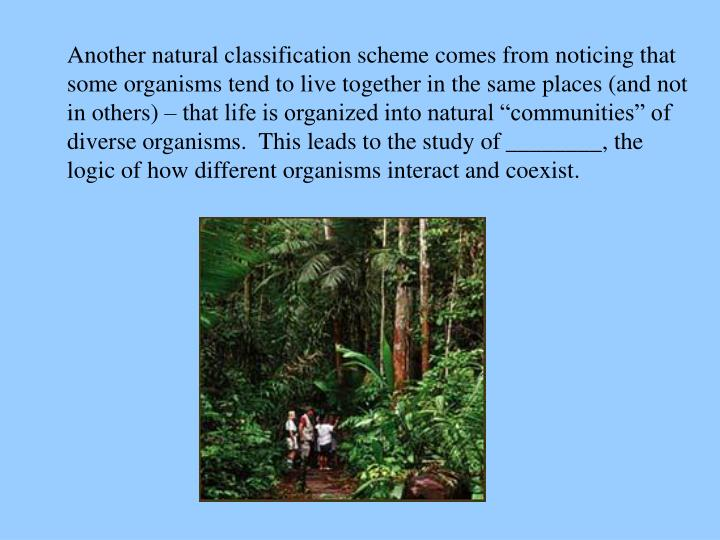 "Another natural classification scheme comes from noticing that some organisms tend to live together in the same places (and not in others) – that life is organized into natural ""communities"" of diverse organisms.  This leads to the study of"
