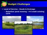 budget challenges8