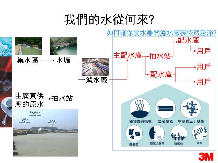 如何確保食水離開濾水廠後依然潔淨