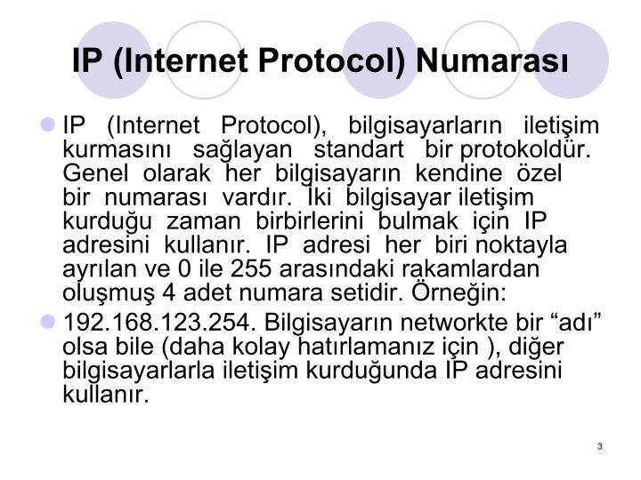 Ip internet protocol numaras