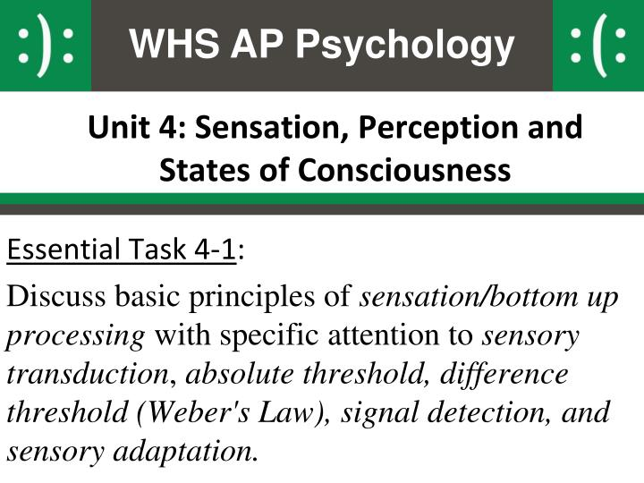 ap psych sensation and perception essay Sensation and perception apsy 382 aug 27th, 2012 chapter 1 psychophysics – how we measure perception (loose definition) sensation = unidimensional = varies in one.