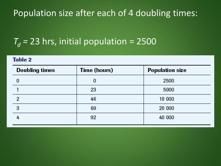 Population size after each of 4 doubling times: