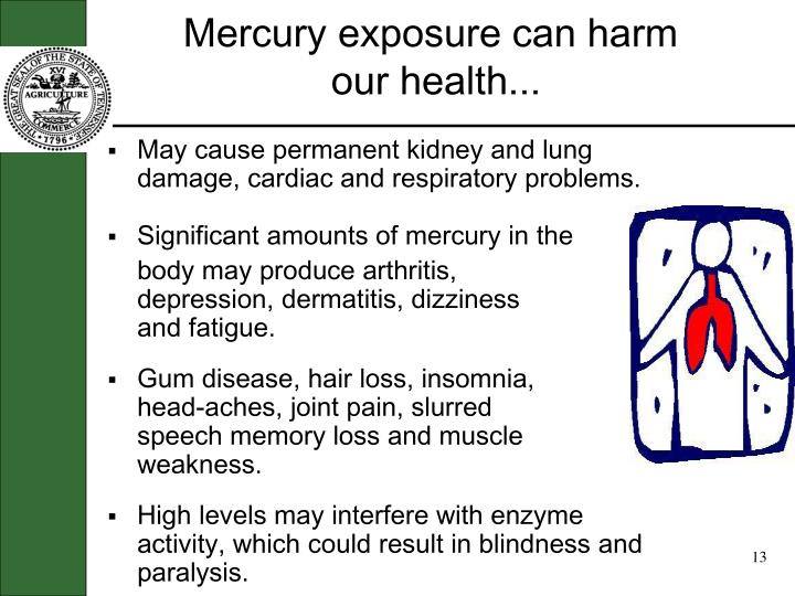Mercury exposure can harm