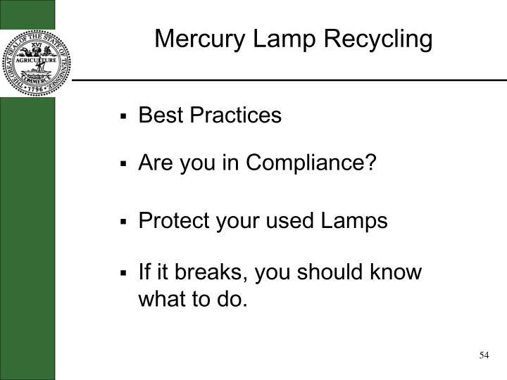 Mercury Lamp Recycling