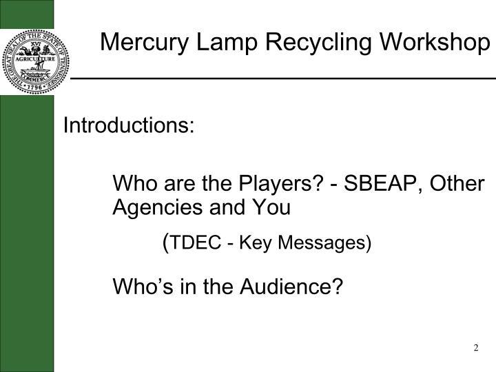 Mercury lamp recycling workshop