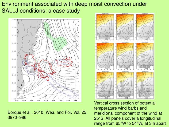Environment associated with deep moist convection under SALLJ conditions: a case study
