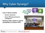 why cyber synergy