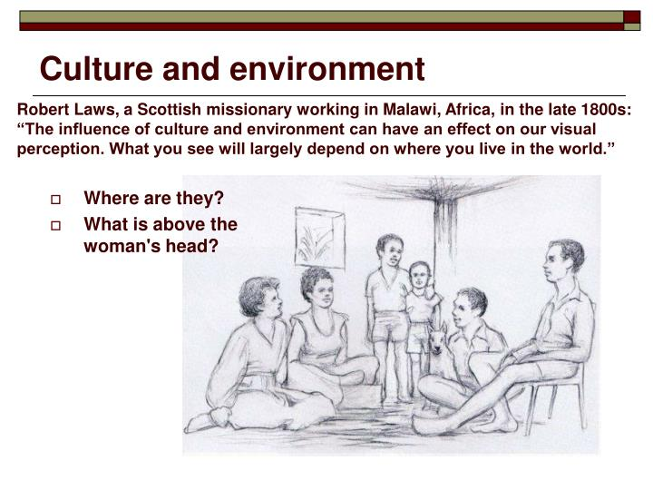 Culture and environment