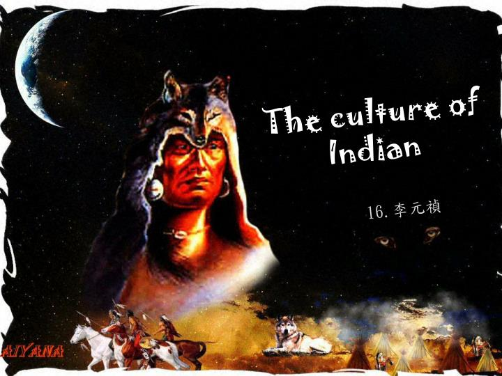 the culture of indian n.