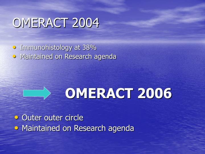 Omeract 2004