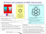 richness and complexity of mind interconnects