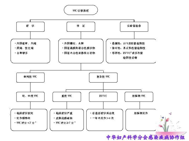中华妇产科学分会感染疾病协作组