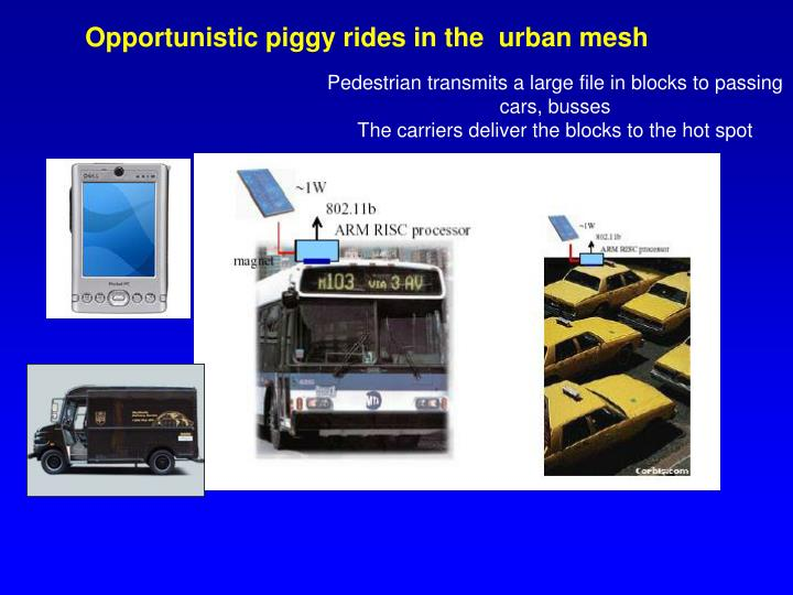 Opportunistic piggy rides in the  urban mesh