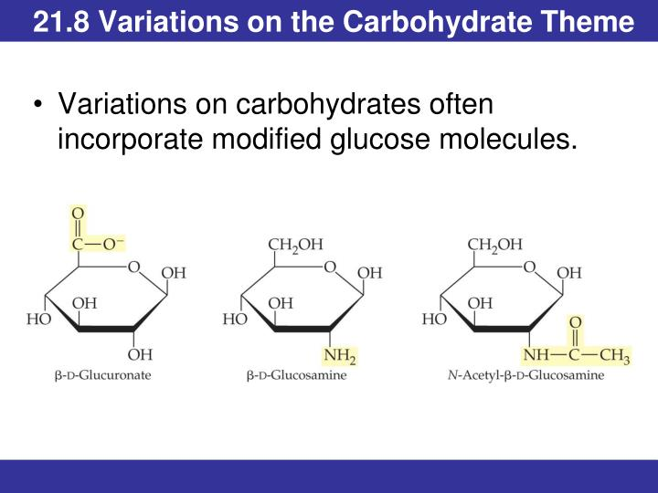 21.8 Variations on the Carbohydrate Theme
