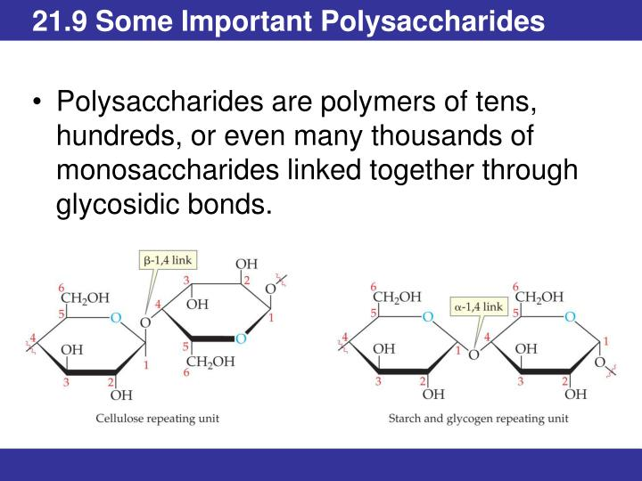 21.9 Some Important Polysaccharides