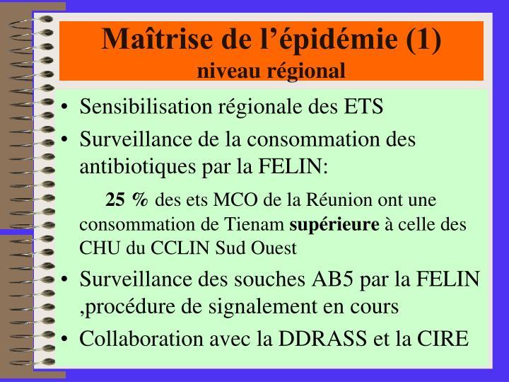 Maîtrise de l'épidémie (1)