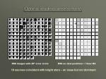 optical loading assessment