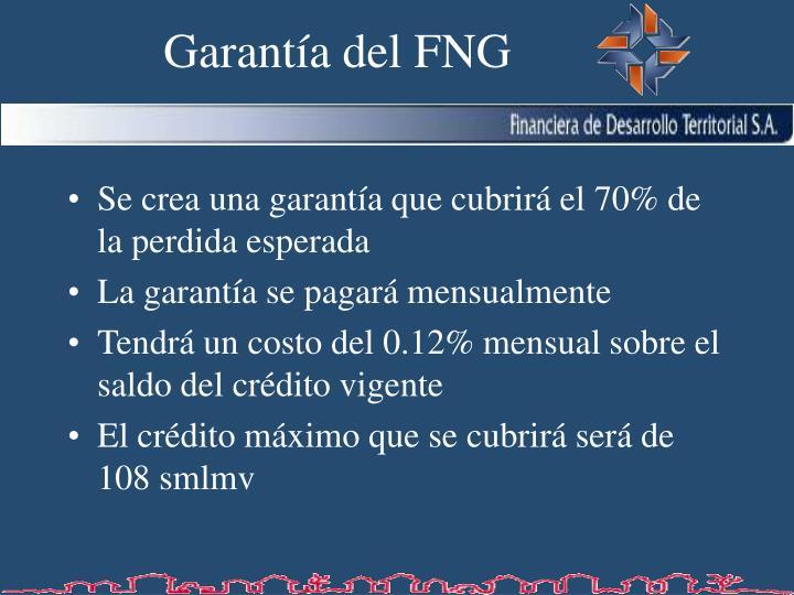 Garantía del FNG