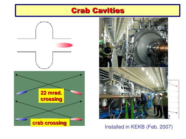Head-on (crab)