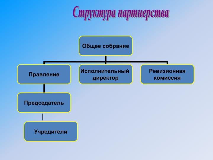 Структура партнерства
