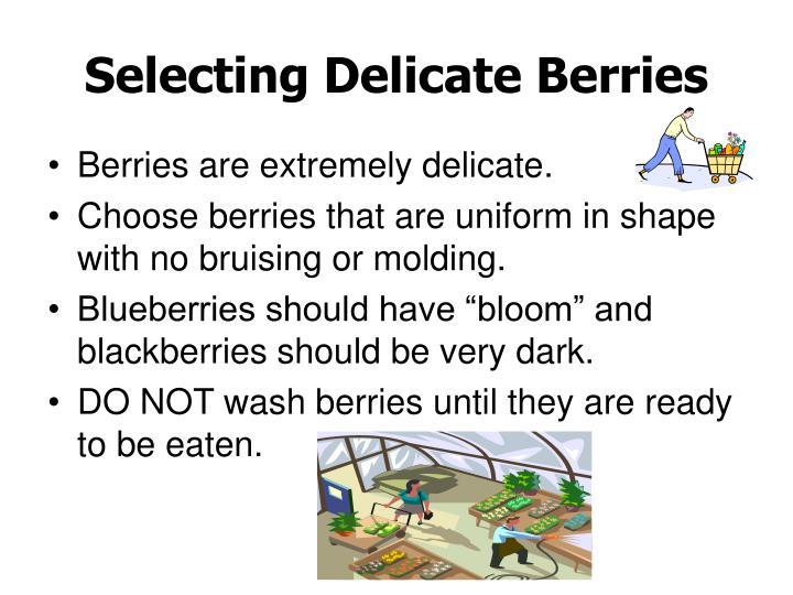 Selecting Delicate Berries