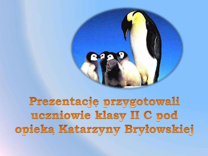 Prezentację przygotowali uczniowie klasy II C pod opieką Katarzyny Bryłowskiej