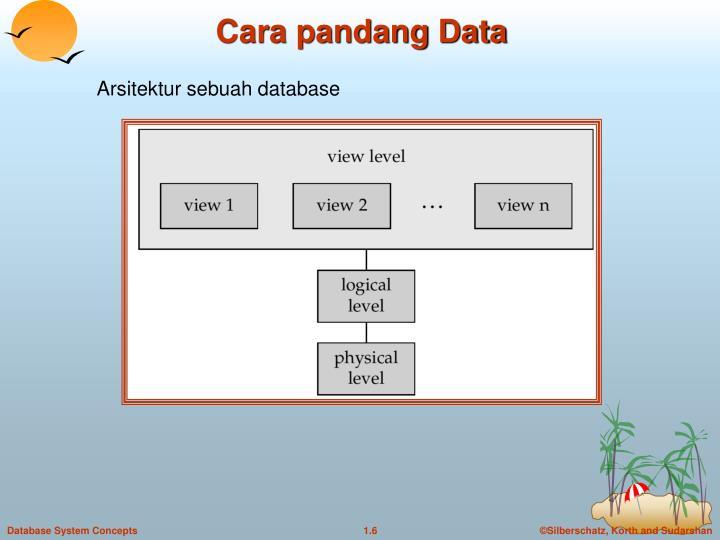 Cara pandang Data