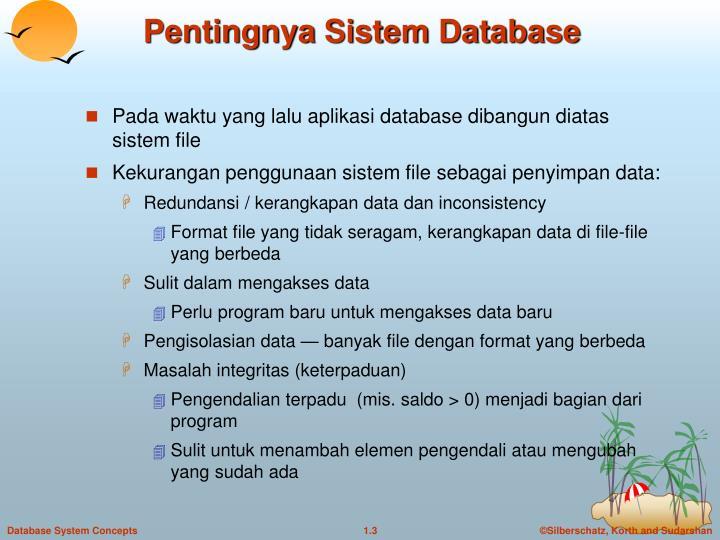 Pentingnya sistem database
