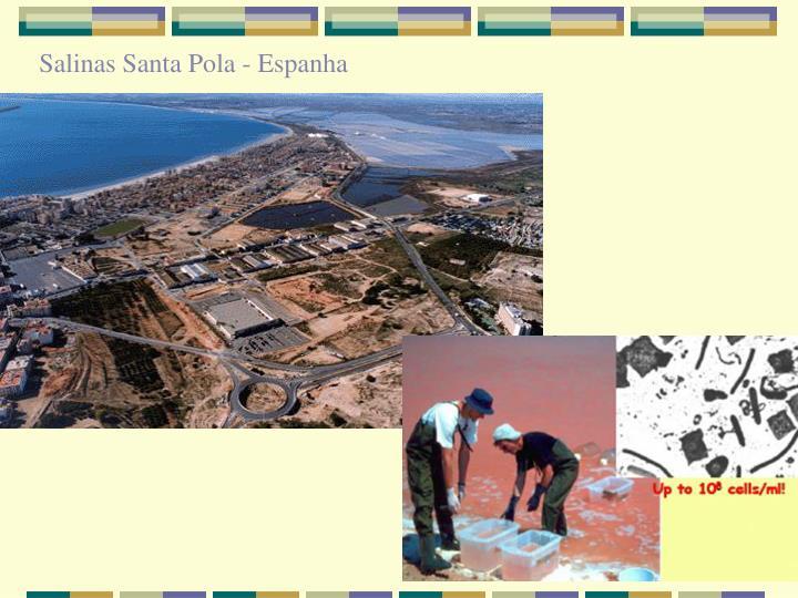 Salinas Santa Pola - Espanha