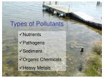 types of pollutants