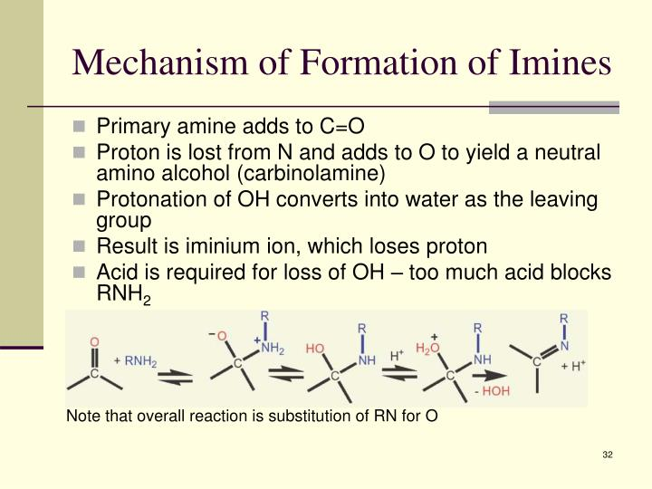 Mechanism of Formation of Imines